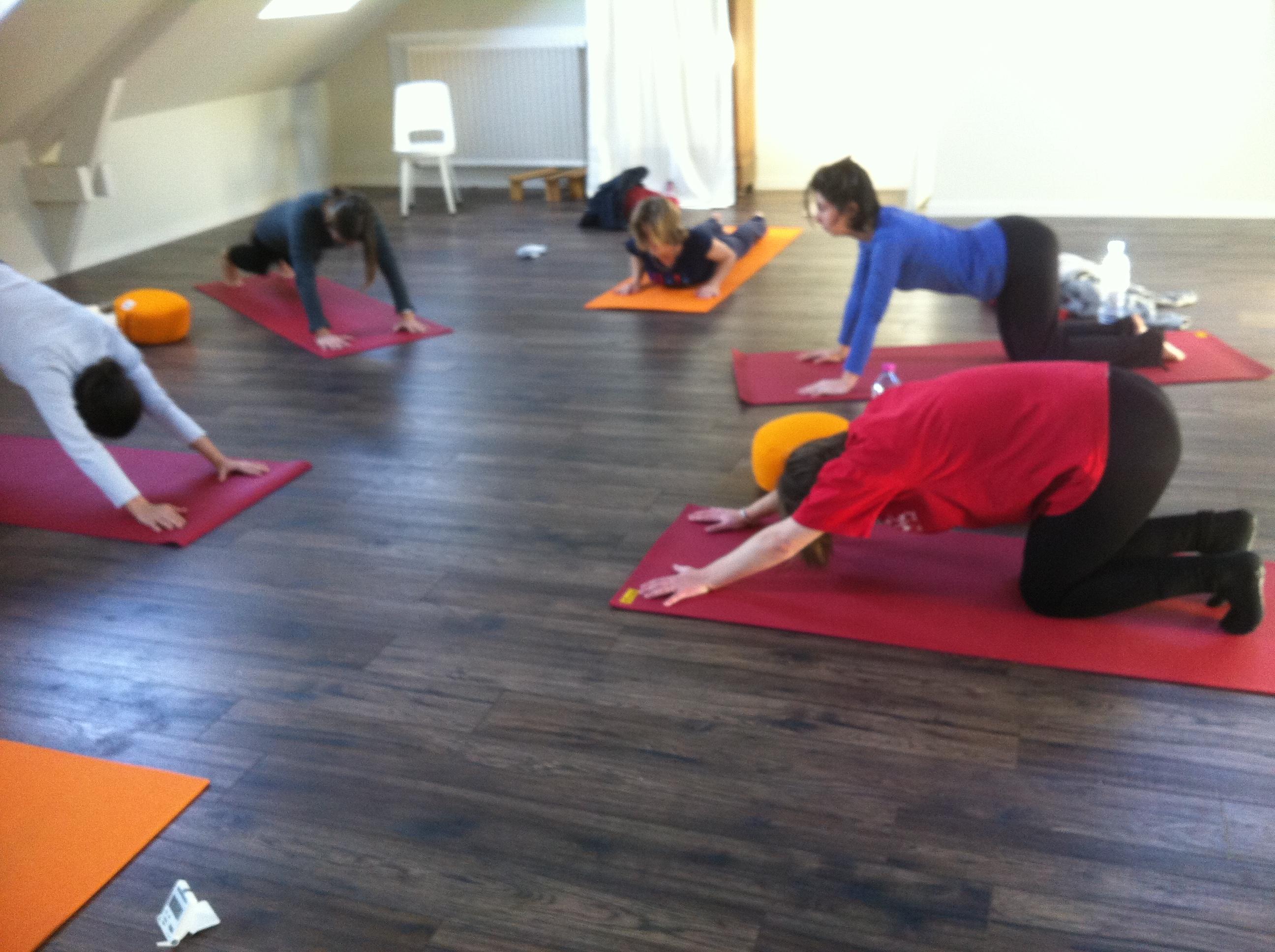 Cours de yoga des saisons mensuel: le 1er samedi matin de chaque mois