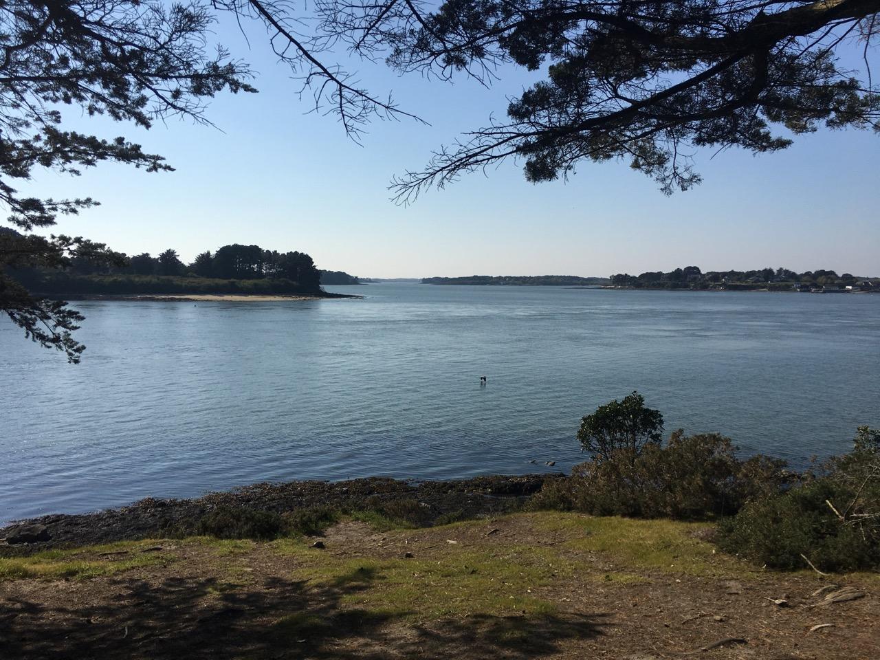 planning juillet 2020- yoga , méditation plein air et plein mer et sorties sur l'eau